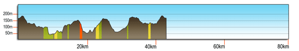 Woodcote 60km profile