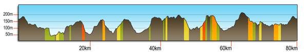 Woodcote 80km profile