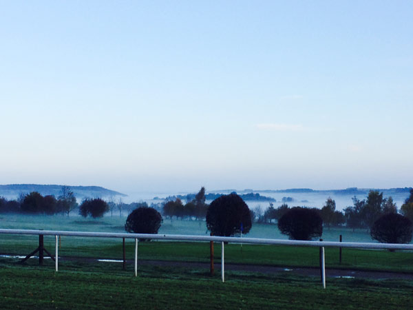Salisbury Race Course at Dawn